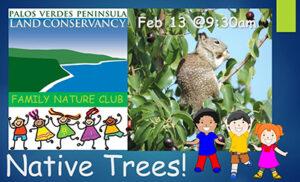 Family Nature Club Trees
